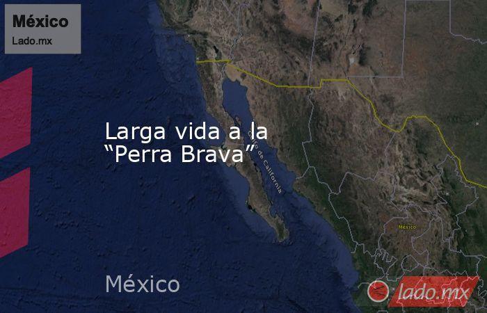 """Larga vida a la """"Perra Brava"""". Noticias en tiempo real"""