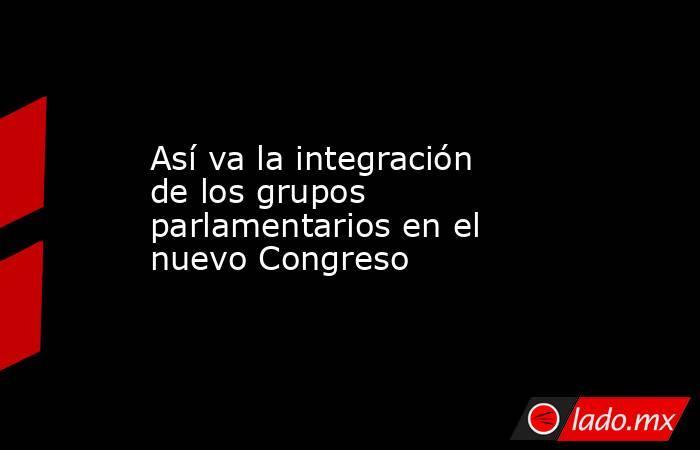 Así va la integración de los grupos parlamentarios en el nuevo Congreso. Noticias en tiempo real