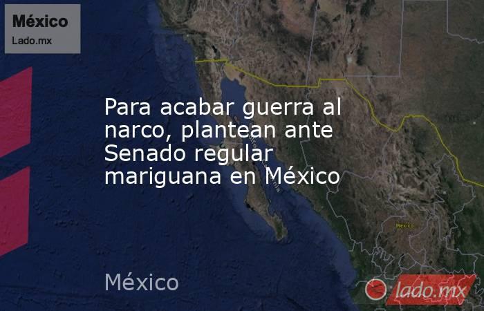 Para acabar guerra al narco, plantean ante Senado regular mariguana en México. Noticias en tiempo real