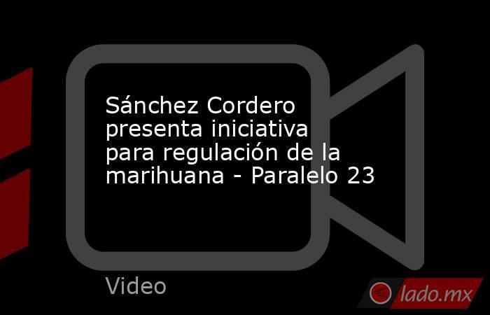Sánchez Cordero presenta iniciativa para regulación de la marihuana - Paralelo 23. Noticias en tiempo real