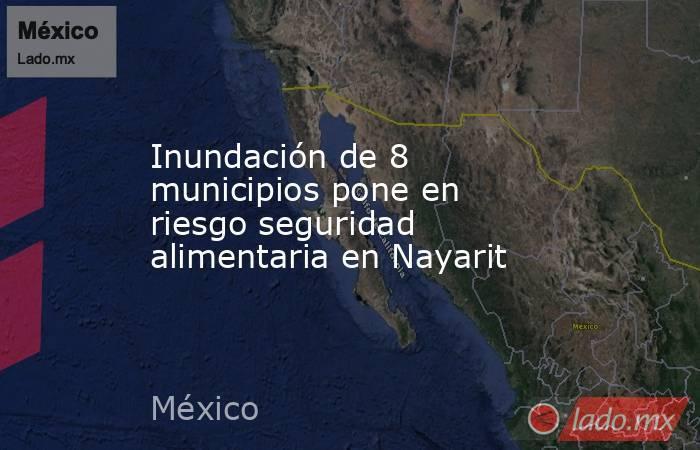 Inundación de 8 municipios pone en riesgo seguridad alimentaria en Nayarit. Noticias en tiempo real