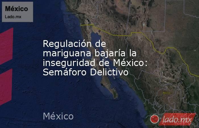 Regulación de mariguana bajaría la inseguridad de México: Semáforo Delictivo. Noticias en tiempo real