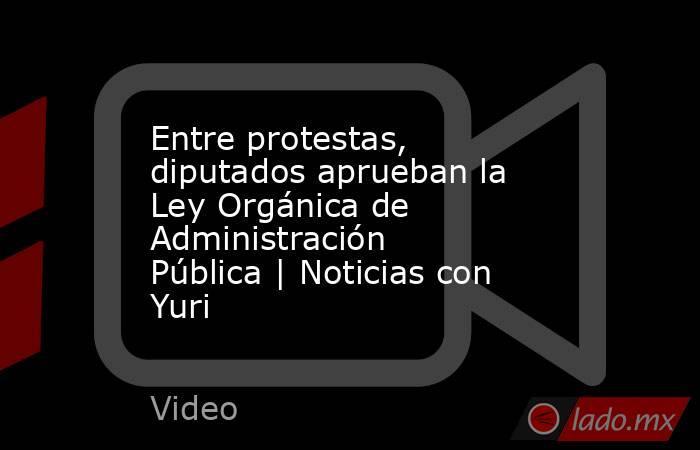 Entre protestas, diputados aprueban la Ley Orgánica de Administración Pública | Noticias con Yuri. Noticias en tiempo real