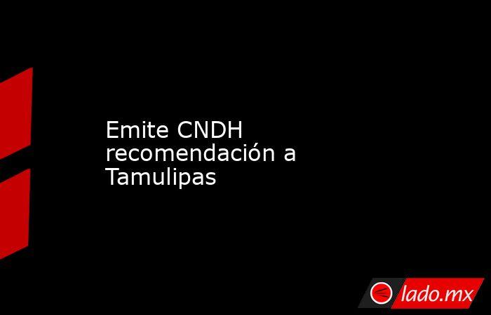 Emite CNDH recomendación a Tamulipas. Noticias en tiempo real