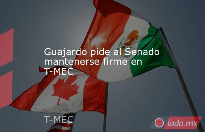 Guajardo pide al Senado mantenerse firme en T-MEC. Noticias en tiempo real