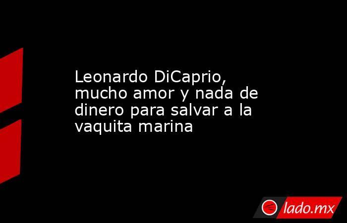 Leonardo DiCaprio, mucho amor y nada de dinero para salvar a la vaquita marina. Noticias en tiempo real