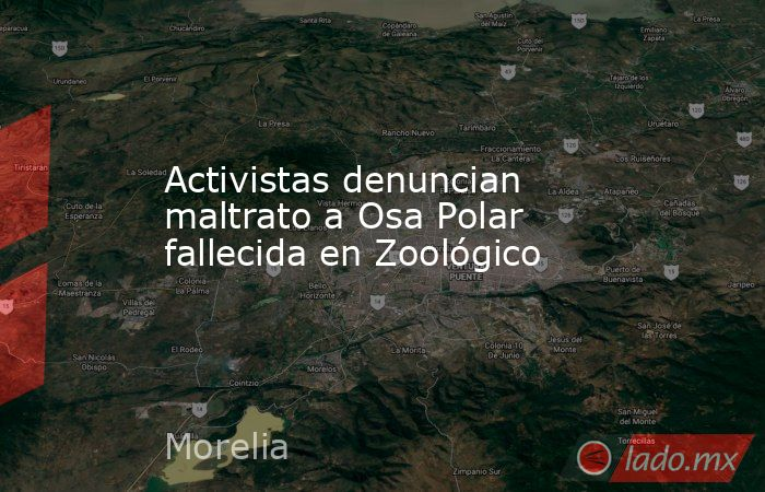 Activistas denuncian maltrato a Osa Polar fallecida en Zoológico. Noticias en tiempo real