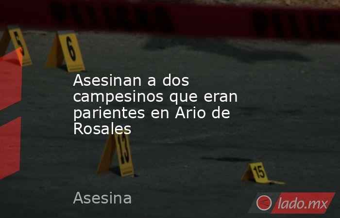 Asesinan a dos campesinos que eran parientes en Ario de Rosales. Noticias en tiempo real