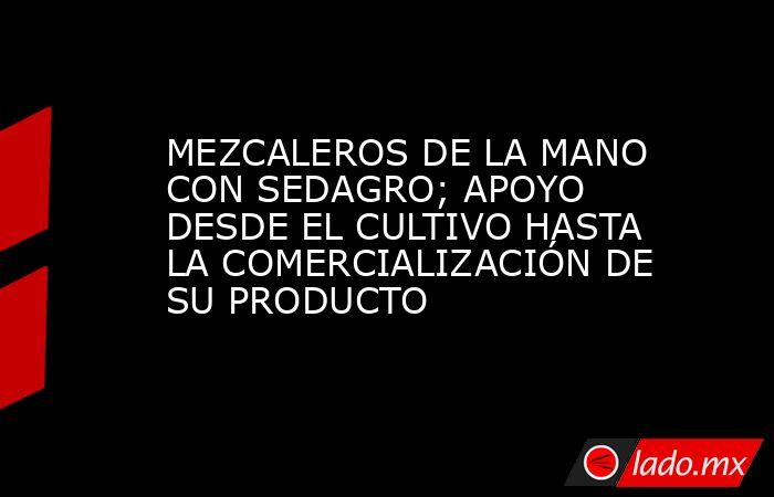 MEZCALEROS DE LA MANO CON SEDAGRO; APOYO DESDE EL CULTIVO HASTA LA COMERCIALIZACIÓN DE SU PRODUCTO. Noticias en tiempo real