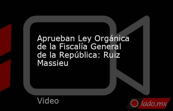 Aprueban Ley Orgánica de la Fiscalía General de la República: Ruiz Massieu. Noticias en tiempo real