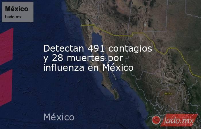 Detectan 491 contagios y 28 muertes por influenza en México. Noticias en tiempo real