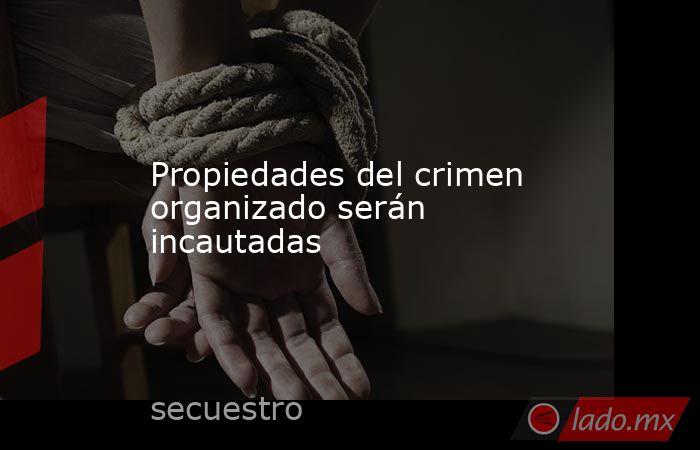 Propiedades del crimen organizado serán incautadas. Noticias en tiempo real