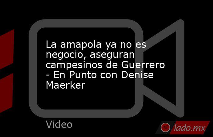 La amapola ya no es negocio, aseguran campesinos de Guerrero - En Punto con Denise Maerker. Noticias en tiempo real