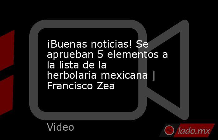 ¡Buenas noticias! Se aprueban 5 elementos a la lista de la herbolaria mexicana | Francisco Zea. Noticias en tiempo real