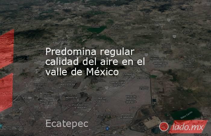 Predomina regular calidad del aire en el valle de México. Noticias en tiempo real