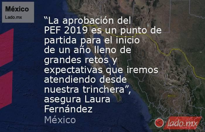 """""""La aprobación del PEF 2019 es un punto de partida para el inicio de un año lleno de grandes retos y expectativas que iremos atendiendo desde nuestra trinchera"""", asegura Laura Fernández. Noticias en tiempo real"""