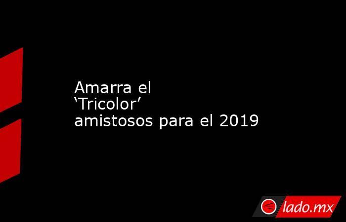 Amarra el 'Tricolor' amistosos para el 2019. Noticias en tiempo real