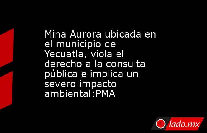 Mina Aurora ubicada en el municipio de Yecuatla, viola el derecho a la consulta pública e implica un severo impacto ambiental:PMA. Noticias en tiempo real