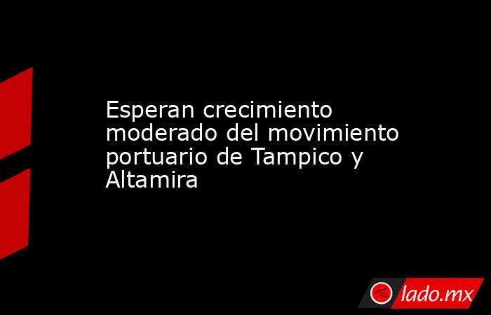 Esperan crecimiento moderado del movimiento portuario de Tampico y Altamira. Noticias en tiempo real