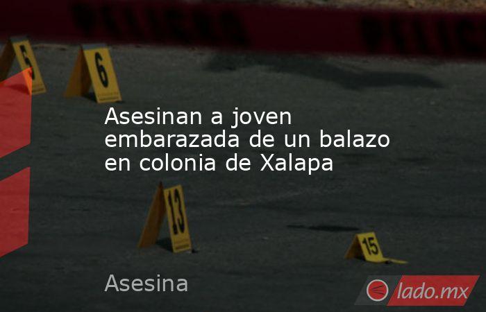 Asesinan a joven embarazada de un balazo en colonia de Xalapa. Noticias en tiempo real