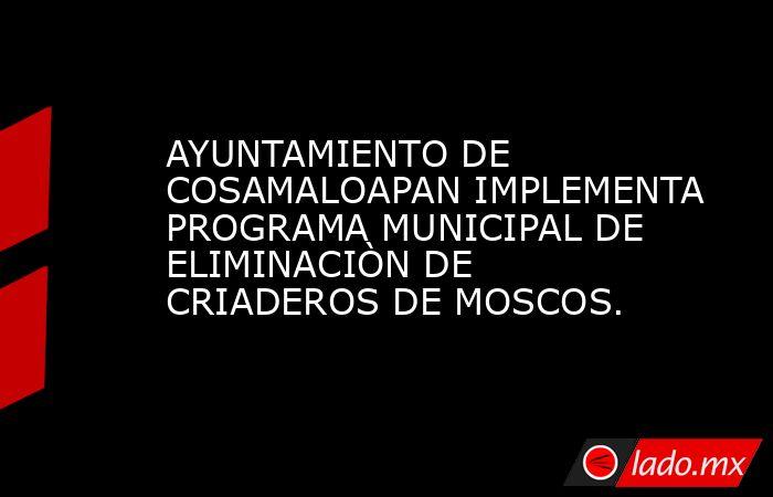 AYUNTAMIENTO DE COSAMALOAPAN IMPLEMENTA PROGRAMA MUNICIPAL DE ELIMINACIÒN DE CRIADEROS DE MOSCOS.. Noticias en tiempo real