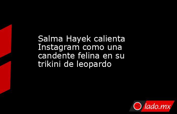 Salma Hayek calienta Instagram como una candente felina en su trikini de leopardo. Noticias en tiempo real