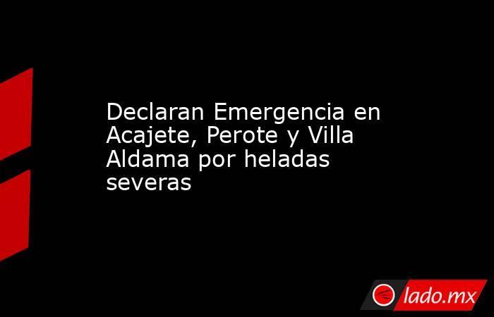 Declaran Emergencia en Acajete, Perote y Villa Aldama por heladas severas. Noticias en tiempo real