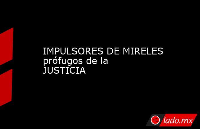 IMPULSORES DE MIRELES prófugos de la JUSTICIA. Noticias en tiempo real