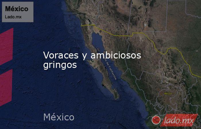 Voraces y ambiciosos gringos. Noticias en tiempo real