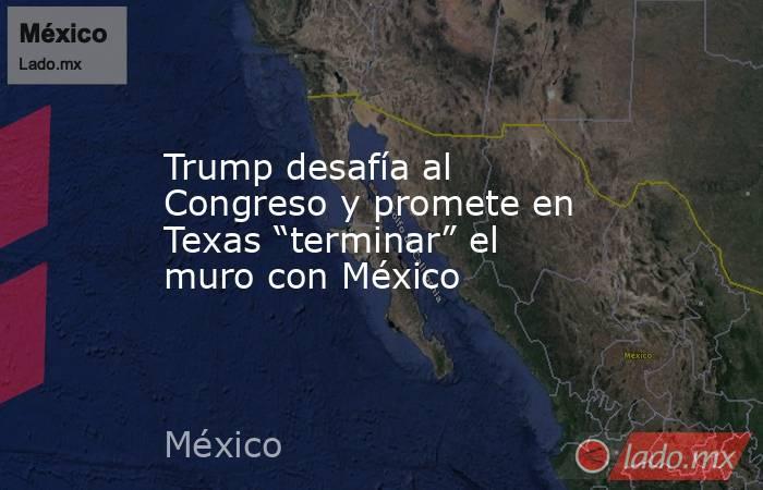 """Trump desafía al Congreso y promete en Texas """"terminar"""" el muro con México. Noticias en tiempo real"""