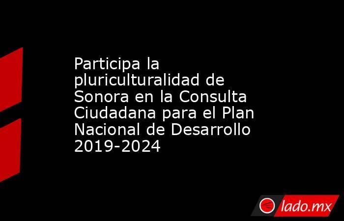 Participa la pluriculturalidad de Sonora en la Consulta Ciudadana para el Plan Nacional de Desarrollo 2019-2024. Noticias en tiempo real