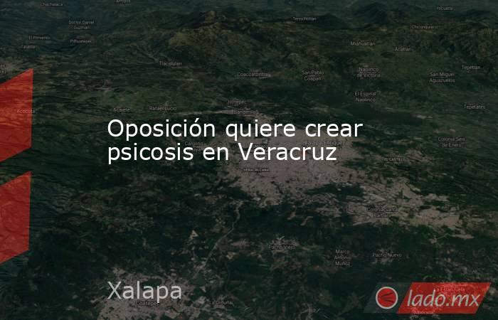 Oposición quiere crear psicosis en Veracruz. Noticias en tiempo real
