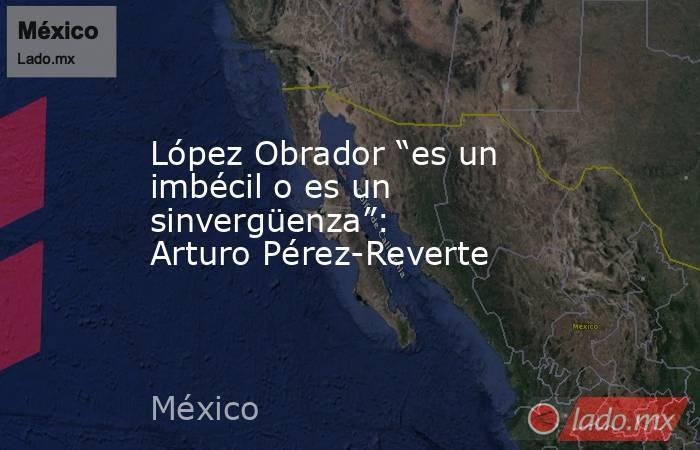 """López Obrador """"es un imbécil o es un sinvergüenza"""": Arturo Pérez-Reverte. Noticias en tiempo real"""