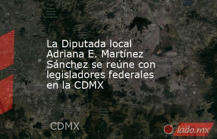 La Diputada local Adriana E. Martínez Sánchez se reúne con legisladores federales en la CDMX. Noticias en tiempo real