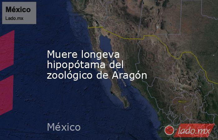 Muere longeva hipopótama del zoológico de Aragón. Noticias en tiempo real