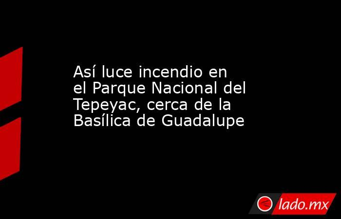 Así luce incendio en el Parque Nacional del Tepeyac, cerca de la Basílica de Guadalupe. Noticias en tiempo real