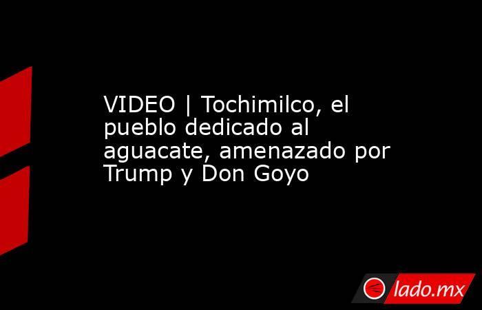 VIDEO   Tochimilco, el pueblo dedicado al aguacate, amenazado por Trump y Don Goyo. Noticias en tiempo real