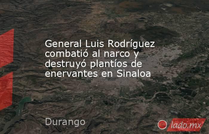 General Luis Rodríguez combatió al narco y destruyó plantíos de enervantes en Sinaloa. Noticias en tiempo real