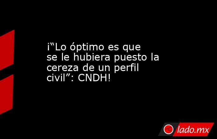 """¡""""Lo óptimo es que se le hubiera puesto la cereza de un perfil civil"""": CNDH!. Noticias en tiempo real"""