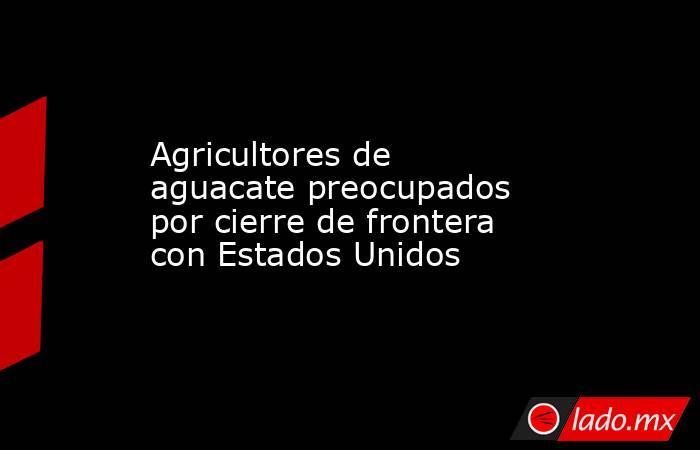 Agricultores de aguacate preocupados por cierre de frontera con Estados Unidos. Noticias en tiempo real