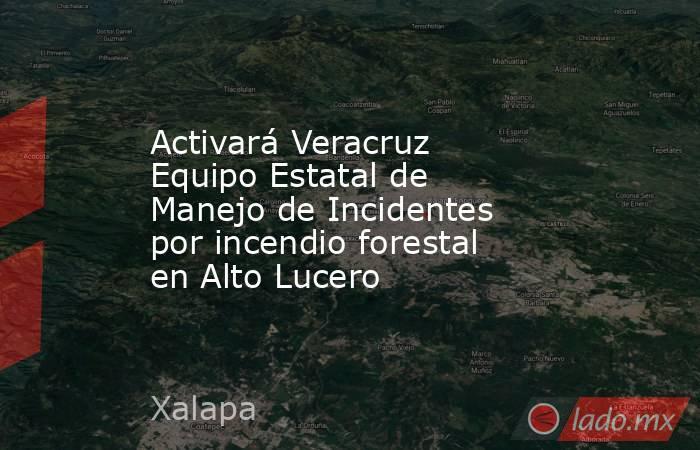 Activará Veracruz Equipo Estatal de Manejo de Incidentes por incendio forestal en Alto Lucero. Noticias en tiempo real