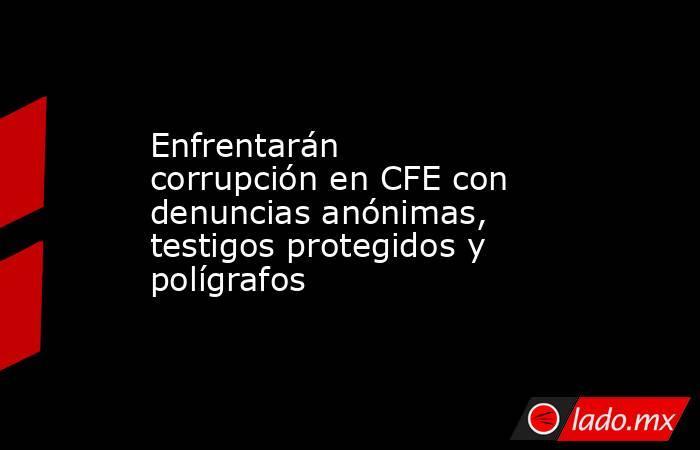 Enfrentarán corrupción en CFE con denuncias anónimas, testigos protegidos y polígrafos. Noticias en tiempo real