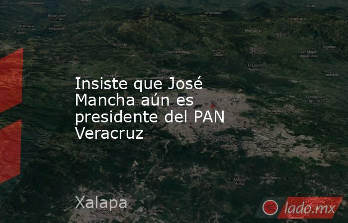Insiste que José Mancha aún es presidente del PAN Veracruz. Noticias en tiempo real