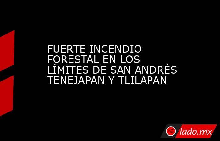 FUERTE INCENDIO FORESTAL EN LOS LÍMITES DE SAN ANDRÉS TENEJAPAN Y TLILAPAN. Noticias en tiempo real