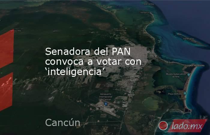 Senadora del PAN convoca a votar con 'inteligencia'. Noticias en tiempo real