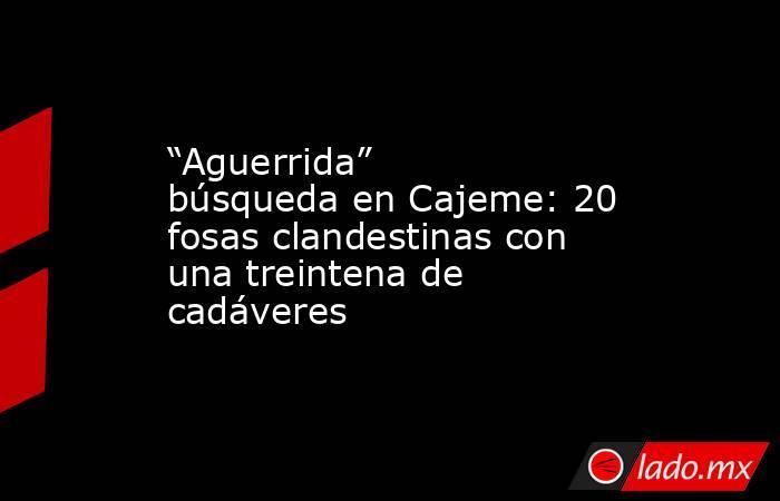 """""""Aguerrida"""" búsqueda en Cajeme: 20 fosas clandestinas con una treintena de cadáveres. Noticias en tiempo real"""