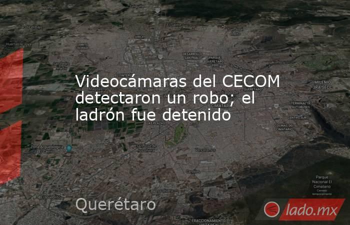 Videocámaras del CECOM detectaron un robo; el ladrón fue detenido. Noticias en tiempo real