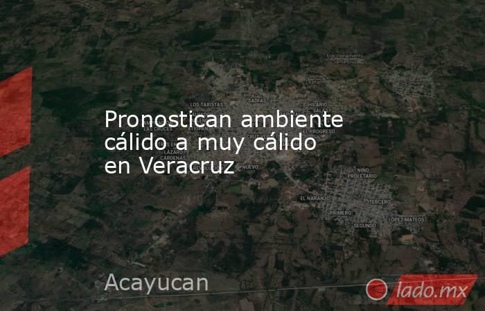 Pronostican ambiente cálido a muy cálido en Veracruz. Noticias en tiempo real