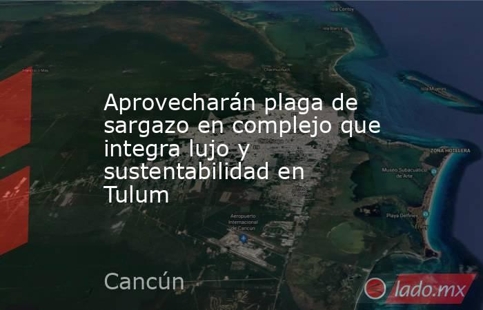 Aprovecharán plaga de sargazo en complejo que integra lujo y sustentabilidad en Tulum. Noticias en tiempo real