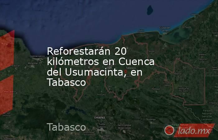 Reforestarán 20 kilómetros en Cuenca del Usumacinta, en Tabasco. Noticias en tiempo real
